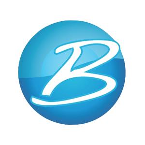 Blutxt SEO Services