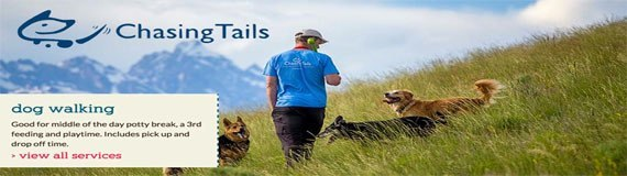 Chasing Tails 570×160