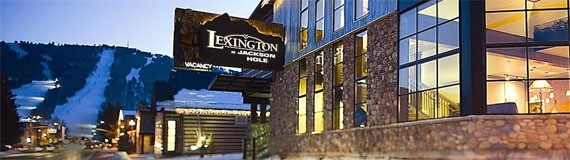 The Lexington 570×160