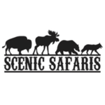 scenic safaris